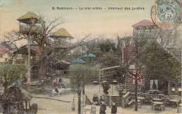 92 - Robinson - Le Vrai Arbre, Intérieur Des Jardins (colorisée, Toilée) - Autres Communes