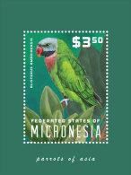 Micronesia-2014-Birds-Par Rots Of Asia - Micronesië