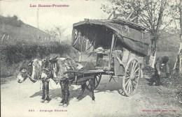 AQUITAINE - 64 - PYRENEES ATLANTIQUES - Attelage Béarnais - Gros Plan - Carte Top - France