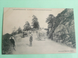 CHAMPTOCEAUX - Le Rocher De La Promenade Publique - Champtoceaux
