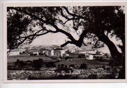 REF 181 CPA 20 Corse Ile Rousse - Francia