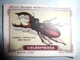 IMAGE Chocolat Peter Cailler Kohler Nestlé COLEOPTERES N 4 LUCANUS CERVUS CERF VOLANT - Nestlé