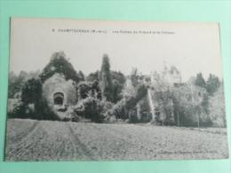 CHAMPTOCEAUX - Les Ruines Du Prieuré Et Le Chateau - Champtoceaux