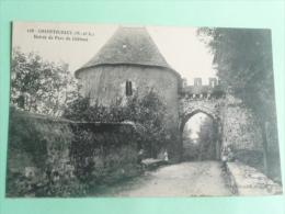 CHAMPTOCEAUX - Entrée Du Parc Du Chateau - Champtoceaux