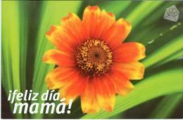 Lote PEP789, Cuba, Entero Postal, Postcard, 2007, Postal Stationary, Feliz Dia, Mama, Flor, Flower, Mother´s Day, 1 - Postales