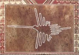 Lote PEP812, Peru, Postal, Postcard, indigenous issues, Acuarela, El Colibri, lineas de Nazca, watercolor