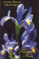 Lote PEP816, Cuba, Postal, Postcard, Entero Postal, 2002, Felicidades Mama, 31, Postal Stationary, Flor, Flower - Postales