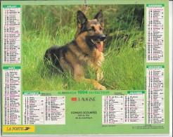 CALENDRIER - ALMANACH DES POSTES ET DES TELEGRAPHES - Chien -  ANNEE 1994  - SEINE ET MARNE - Big : 1991-00