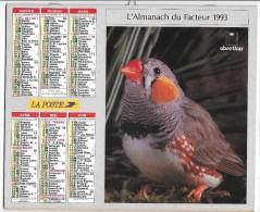 CALENDRIER - ALMANACH DES POSTES ET DES TELEGRAPHES - Oiseaux -  ANNEE 1993  - SEINE ET MARNE - Big : 1991-00