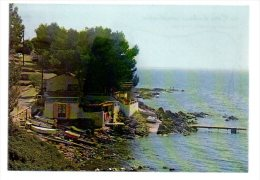 REF 177 CPSM 83 SANARY Sur Mer Port Issol - Sanary-sur-Mer