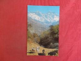 Asia > Nepal  Stamp & Cancel Ref 1437 - Nepal