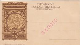 Esposizione Postale Filatelica Internazionale Milano 1894 SAGGIO - Expositions