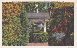 Wishing Well In The Chauncey Olcott Garden Saratoga Springs New York - Saratoga Springs