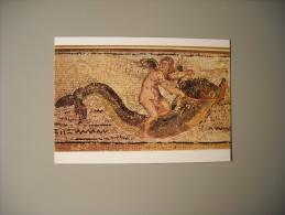TUNISIE MUSEE ARCHEOLOGIQUE DE SFAX AMOUR SUR DAUPHIN - Tunisia