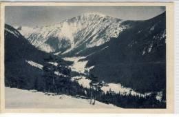 KRUMMHÜBEL - KARPACZ - Orig. Aufn. V. O. Blau, Nr. 7 - Der Riesengrund M. D. Schneekoppe,  1923 - Schlesien