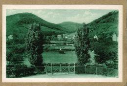 Thann (Haut-Rhin) Jardin De Ville. - Thann