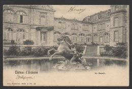 DF / BELGIQUE / PROVINCE DE NAMUR / HOUYET / CHÂTEAU D' ARDENNE / UN BASSIN / CIRCULÉE EN 1902 - Houyet