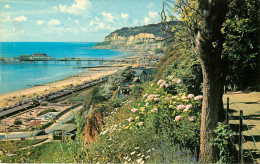 Royaume-Uni - Angleterre - Isle Of Wight - The Esplanade And Pier , Shanklin - Bon état Général - Angleterre