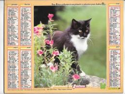 CALENDRIER - ALMANACH DES POSTES ET DES TELEGRAPHES - ANNEE 1990 - CHAT ET CHIEN - SEINE ET MARNE - Big : 1981-90
