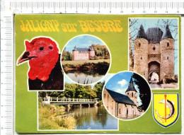JALIGNY  Sur  Besbre  -   5 Vues  : La Dinde - La Besbre Et Le Château - Entrée Du Château -  Le Pont  - L Eglise - France