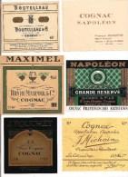 Lot Etiquettes COGNAC Boutelleau, Borderie, H.Maximel, Sicard, Méchain Et Fouchet - - Etiketten