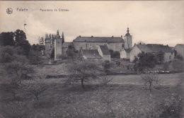 Falaën 22: Panorama Du Château 1911 - Onhaye