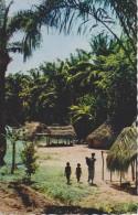 FRANCE COLONIE,SENEGAL,DAKAR,VIL LAGE EN FORET EN 1962,famille Nombreuse,paillotte,jungl E - Sénégal