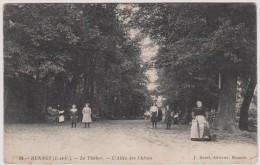 Ille Et Vilaine  : RENNES : Le   Thabor  , L'  Allée  Des  Chênes - Rennes