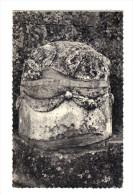 Pignans: Notre Dame Des Anges, Pierre Taurobolique, Autel Paien (14-2624) - Sonstige Gemeinden