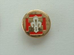 Pin�s SCOUTS DE FRANCE - LOGO
