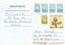 Belarus 1990 Grodno Pottery Overprint Cover - Wit-Rusland