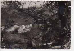 REF 178 CPSM CORSE BOCOGNANO - Autres Communes