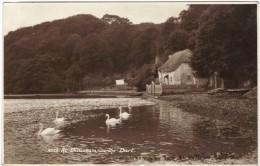 At Dittisham-on-the-Dart - Black & White Real Photo Postcard 1935 - England
