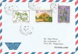 Algeria 1999 El-harrach Royal Nubian Mausoleum Pear Pyrus Flower Olive Oil Press Cover - Algerije (1962-...)