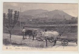 Varese - In Strada Per La Madonna Del Monte - Bella Animazione - 1905     (140809) - Varese