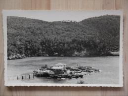 HOTEL PLAYA camp de Mar Mallorca ecrite timbree