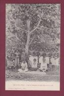 OCEANIE - 120814 -  ARCHIPEL FIDJI - Chefs Et Indigènes Au Pied D'un Arbre à Pain - Etnique - Fidji