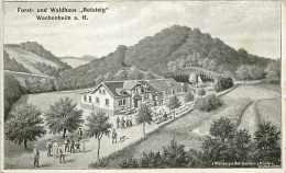 223893-Germany, Wachenheim, Forst- Und Waldhaus Rotsteig, J Rheinberger - Bad Duerkheim