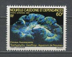 CALEDONIE 1980 PA N° 209 **  Neuf = MNH Superbe Faune Marine Marine Fauna - Aéreo