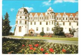 Germany - Celle - Schloss - Castle - Castillos