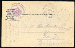 BETTER HUNGARY 1915 WWI FELDPOST CARD BUTTERFLY CANCEL - Butterflies