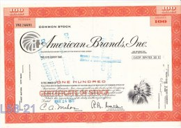 Shares: USA 1971 American Brands Inc. 100 Shares (L58-21) - Shareholdings