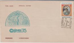 India  1975  Birds  Crane Cancellation  Gujpex  Special Cover   # 83372  Inde Indien - Cranes And Other Gruiformes