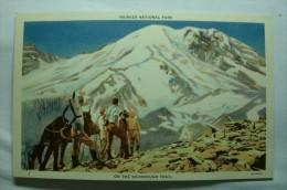 Rainier National Park - Onthe Sourdough Trail - Etats-Unis