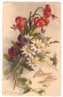 (Illustrateurs) 022, Klein, GOM 2960, Fleurs - Klein, Catharina