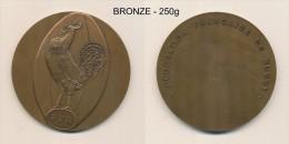 Medaille - Plaque BRONZE - Federation Francaise De RUGBY - Jetons & Médailles