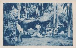 CARTE POSTALE ANCIENNE,COLONIE,ASIE,ASI A,SRI LANKA,CEYLON,CEYLAN,ceyla Nais,mission Humanitaire,attelage De Boeufs,pays - Sri Lanka (Ceylon)