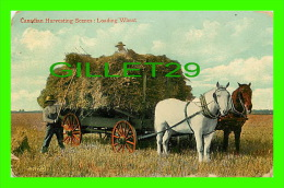 AGRICULTURE - CANADIAN HARVESTING SCENES, LOADING WHEAT - TRAVEL IN 1907 - THE VALENTINE & SONS - - Cultures