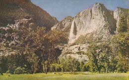 Yosemite Meadow Yosemite National Park