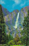 Yosemite Falls From The Meadows Yosemite National Park